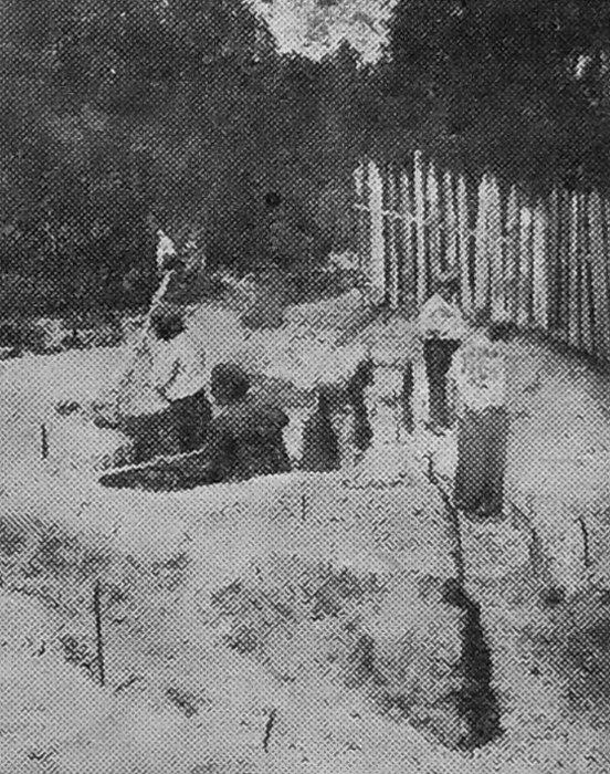 Раскопки в с. Супоневе. Траншея перед усадьбой гр. Поликарпова. 1926 г.