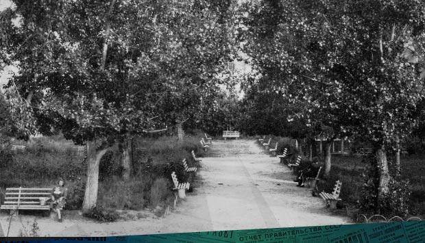 Озеленение Брянска // Брянский рабочий. – 1944. – 10 окт. (№45): об озеленении нашего города в первые годы после освобождения
