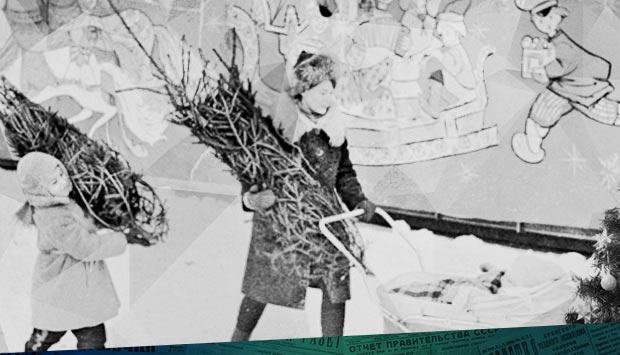 Ёлки едут в Крым // Брянский рабочий. - 1972. - 24 дек.: о поставке в Крым брянских ёлок в 1972 году