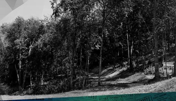 Загородом, недалеко от женского монастыря… // Орловский вестник. – 1900. – 4 июн. (22 мая) (№134): о Лесных сараях, как месте отдыха, досуге в Привокзальной слободе и Бежице 120 лет назад